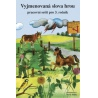 Nakladatel: Nová škola - Duha Jazyk: Čeština Vazba: Paperback Počet stran: 64